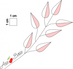 alice balice | test produit | machine à coudre Toyota Oekaki | broderie | piqué libre